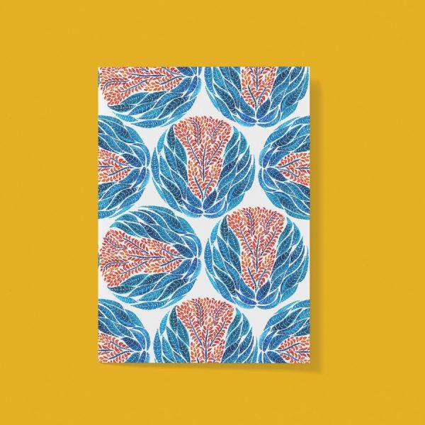 Aloe java card